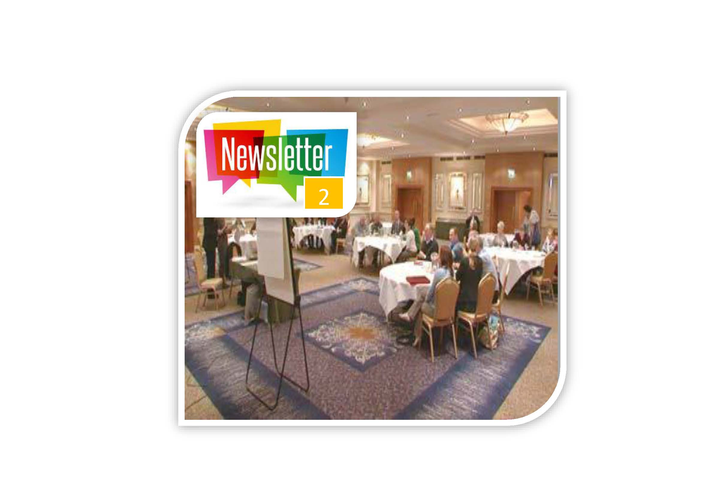 IL Newsletter Issue 2