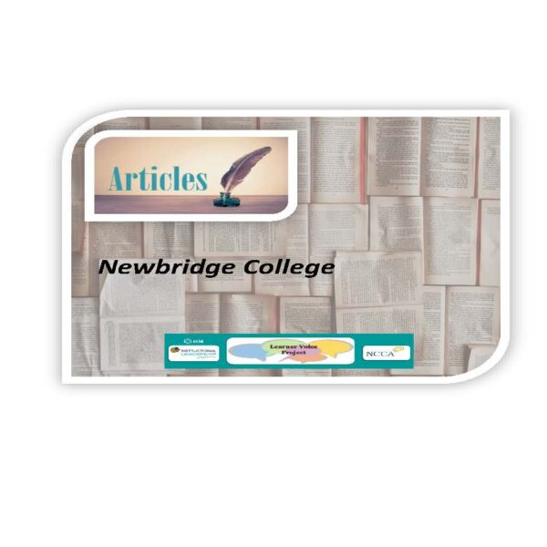 Learner Voice Articles – Newbridge College